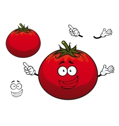 Happy cartoon plump red tomato vegetable character vector