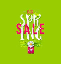 big spring sale label vector image