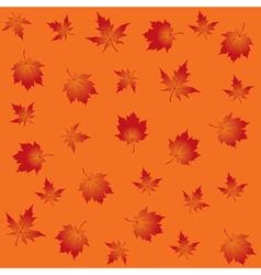 Maple background vector