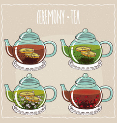 Set of different brewed black and green teas vector