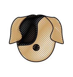 head dog animal pet domestic image vector image