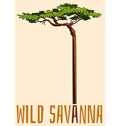 Wild savanna sign with tree vector