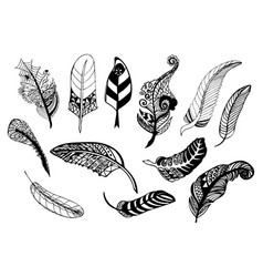 Hand drawn whimsical feather collection vector