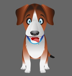 Dog beagle facing forward vector