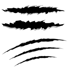 Grunge cat scratches vector