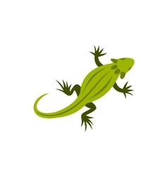 Chameleon icon in flat style vector