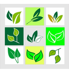 Icons of green leaves vector