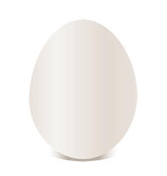 Egg vector illustration vector