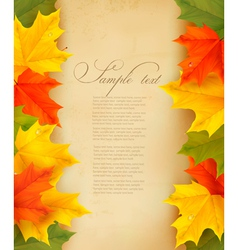 Autumn background with colorful leaves and old vector