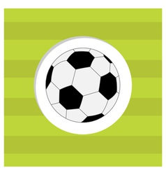 Football soccer ball icon on green grass field vector image