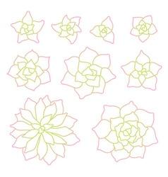 Line art succulent plant set vector image vector image