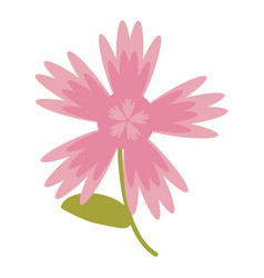 pink flower natural image vector image