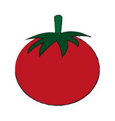 healthy fresh vegetable vector image