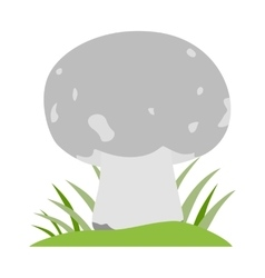 Mushrooms cartoon on white vector