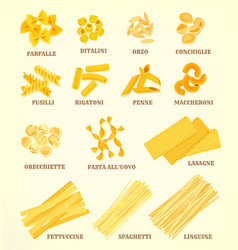 Italian pasta types or sorts icons vector