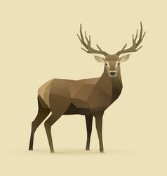 oh deer vector image vector image