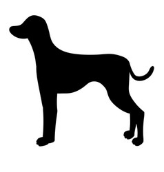 silhouette of dalmatian isolated on white vector image