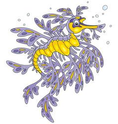 Leafy sea dragon vector