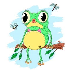 Pretty frog vector image