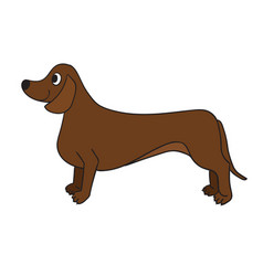 Cute cartoon dachshund isolated on white vector