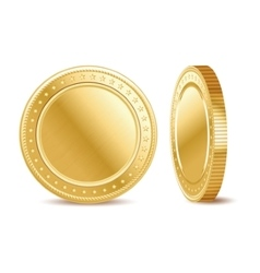 Empty golden finance coin on the white background vector image