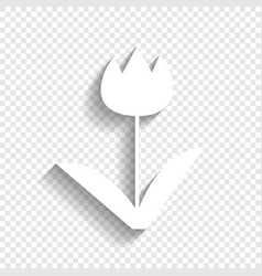 tulip sign white icon with soft shadow on vector image vector image