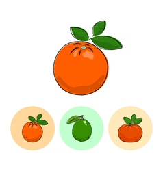 Fruit icons orange lime  mandarin vector