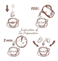 Tea preparation ceremony composition vector