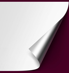 Curled metalic corner of white paper on background vector