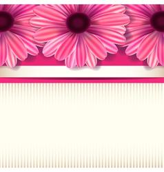 floral invitation white vector image