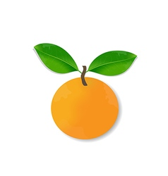 Fresh orange with leaves vector image vector image