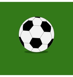 Football soccer ball icon with shadow green grass vector