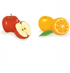 apples and oranges vector image