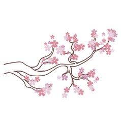Blooming Sakura Branch2 vector image