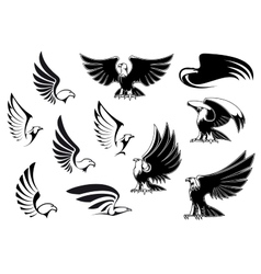 Eagles for logo tattoo or heraldic design vector image vector image