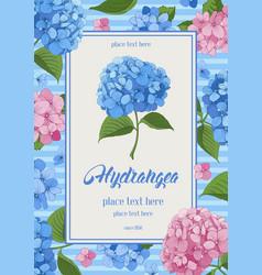 hydrangea card vector image vector image