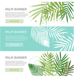 Palm leaves banner template vector