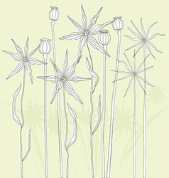 Meadow weeds and poppies silhouettes vector