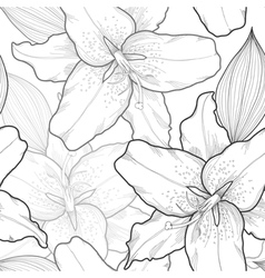 seamless black-and-white background lilies vector image vector image