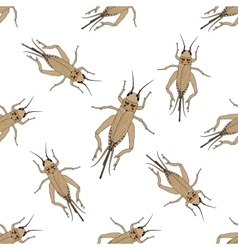 Seamless pattern with cricket or grig gryllus vector
