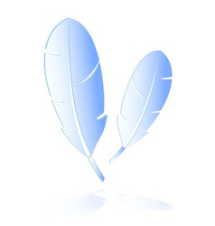 Two light blue feathers symbols reflection eps10 vector