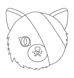 Sick cat with bandage on a head icon in outline vector