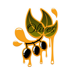 Olive oil drips and black olives icon vector