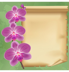 Vintage background with flower orchid and paper vector