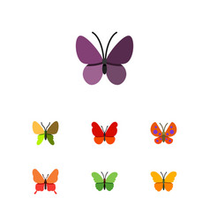 Flat moth set of moth milkweed monarch and other vector