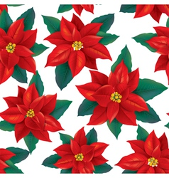Seamless pattern of red poinsettia vector
