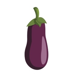 Eggplant icon organic and healthy food vector