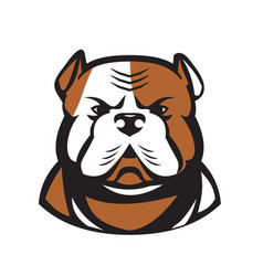 American bulldog head front retro vector