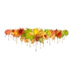 Autumn Dripping Paint Leaves vector image