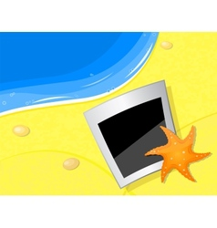 photo and starfish on the beach coast vector image